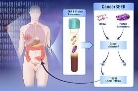 9d043cac5c Provides unique new framework for early detection of the most common  cancers.